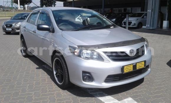 Buy Used Toyota Corolla Silver Car in Mbabane in Manzini