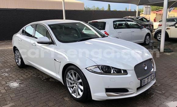 Buy Used Jaguar XF White Car in Manzini in Manzini