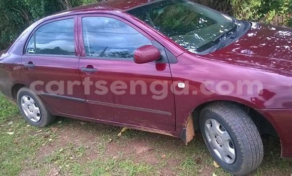 Buy Used Toyota Corolla Red Car in Manzini in Swaziland