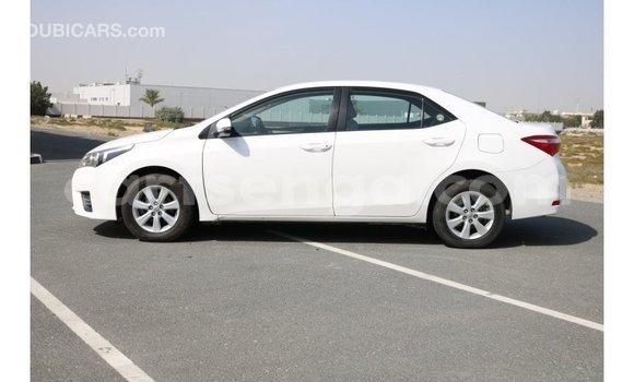 Buy Import Toyota Corolla White Car in Import - Dubai in Hhohho