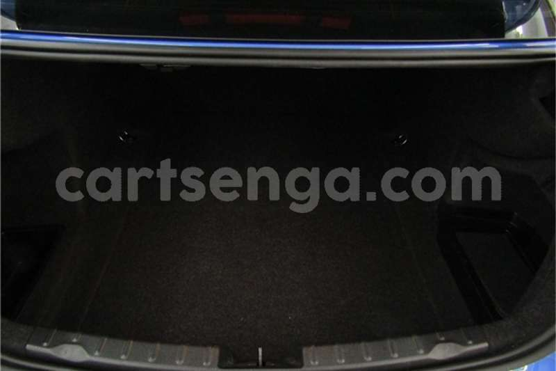 Big with watermark 63