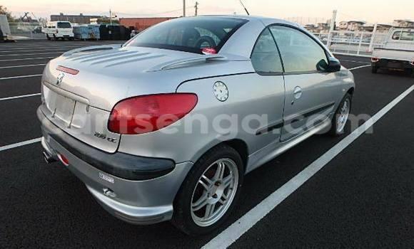 Buy Peugeot 206 Silver Car in Manzini in Swaziland