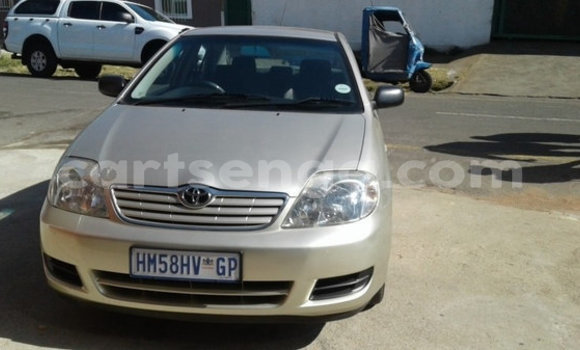 Buy Used Toyota Corolla Beige Car in Manzini in Manzini