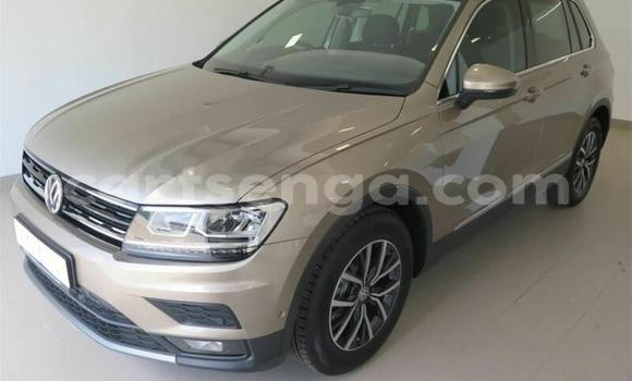Buy Used Volkswagen Tiguan Brown Car in Ezulwini in Hhohho