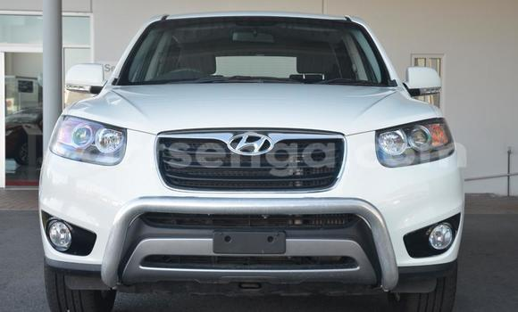 Buy Hyundai Santa Fe White Car in Manzini in Swaziland