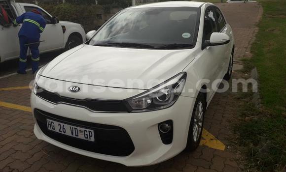 Buy Used Kia Rio White Car in Manzini in Manzini