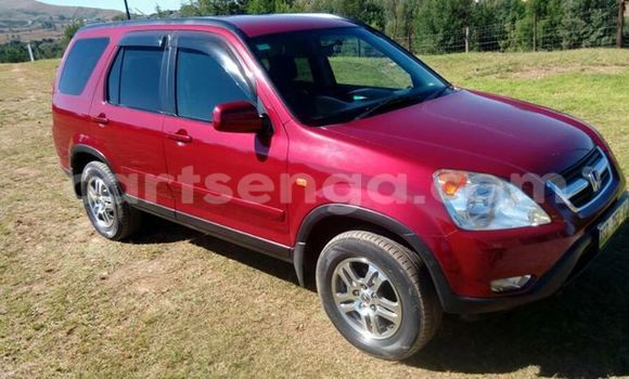 Buy Used Honda CR-V Red Car in Manzini in Swaziland