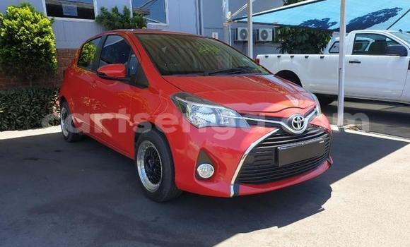 Buy Used Toyota Yaris Red Car in Manzini in Manzini