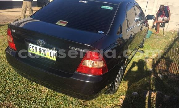 Buy Used Toyota Corolla Black Car in Manzini in Swaziland
