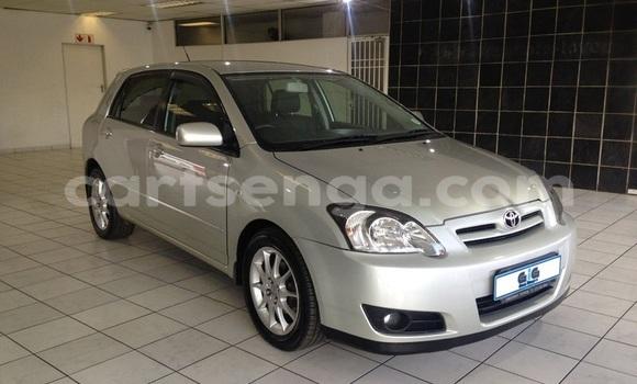 Buy Used Toyota Runx Silver Car in Ezulwini in Hhohho