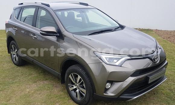 Buy Used Toyota RAV4 Brown Car in Mbabane in Manzini