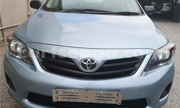 Buy Used Toyota Corolla Blue Car in Mbabane in Manzini
