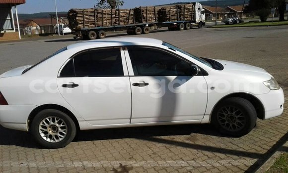 Buy Used Toyota Corolla White Car in Manzini in Swaziland