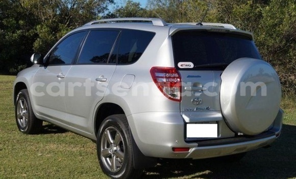 Buy New Toyota RAV4 Silver Car in Manzini in Swaziland