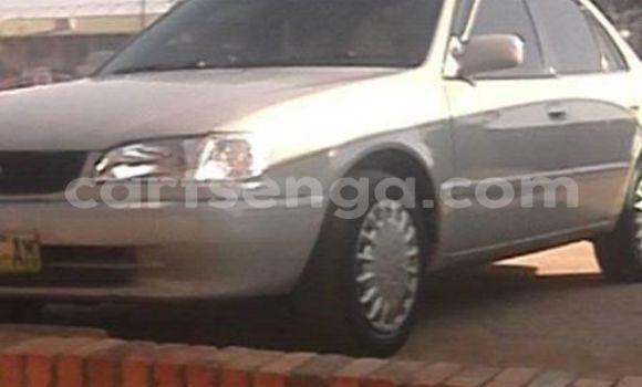 Buy Used Toyota Corolla Silver Car in Manzini in Swaziland