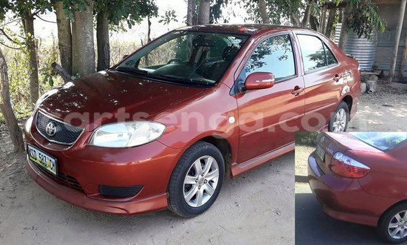 Buy Toyota Vios Other Car in Manzini in Swaziland