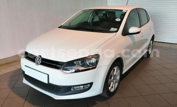 Buy Used Volkswagen Polo White Car in Pigg's Peak in Hhohho