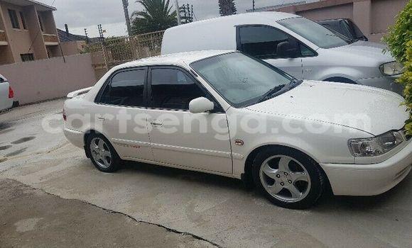 Buy Used Toyota Corolla White Car in Ezulwini in Hhohho