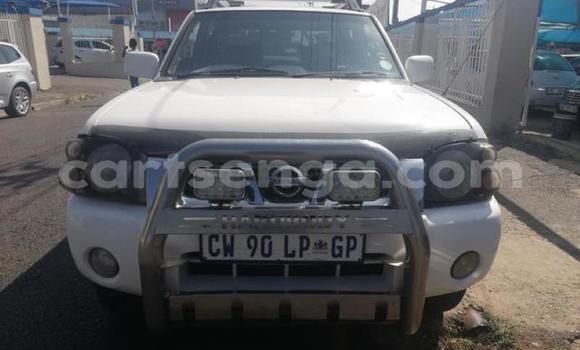 Buy Used Nissan Hardbody White Car in Manzini in Manzini