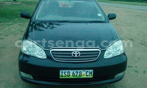Buy Toyota Corolla Black Car in Manzini in Swaziland