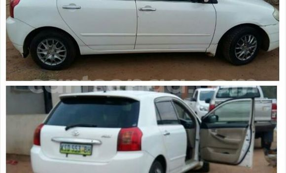 Buy Toyota Runx White Car in Manzini in Swaziland