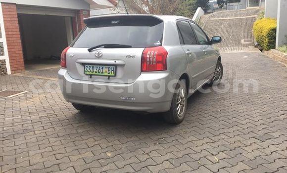 Buy Toyota Runx Silver Car in Manzini in Swaziland