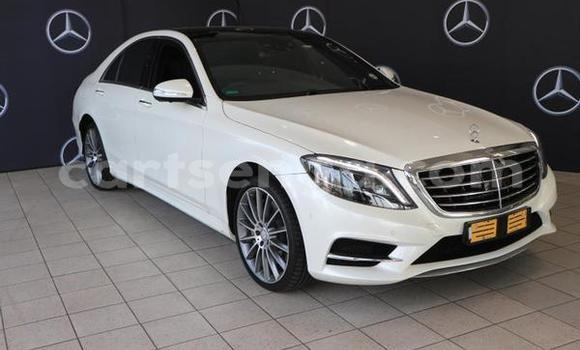 Buy Used Mercedes‒Benz C–Class White Car in Bhunya in Manzini