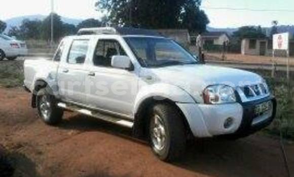 Buy Used Nissan Hardbody White Car in Manzini in Swaziland