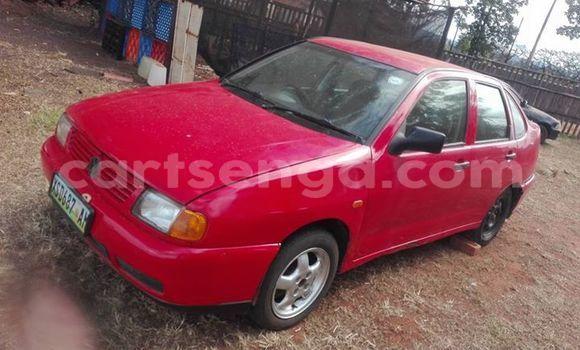 Buy Used Volkswagen Polo Red Car in Manzini in Swaziland