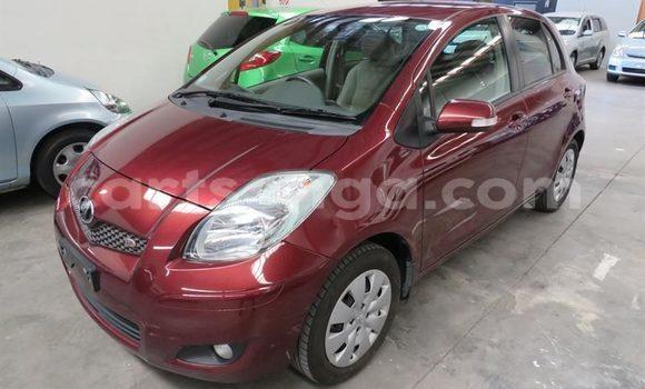 Buy Used Toyota Vitz Red Car in Manzini in Swaziland