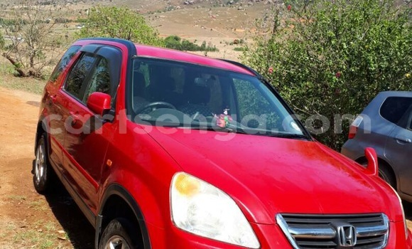 Buy Used Honda CR-V Red Car in Mbabane in Swaziland