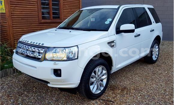 Buy Used Land Rover Freelander White Car in Mbabane in Swaziland