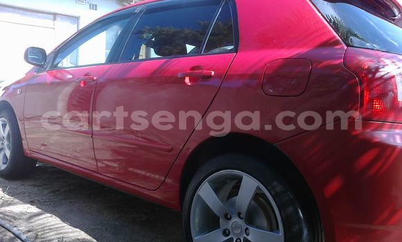 Buy Used Toyota Runx Red Car in Manzini in Swaziland