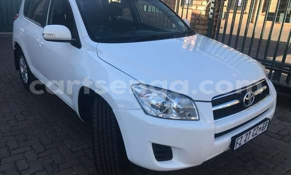 Buy Used Toyota RAV4 White Car in Manzini in Swaziland