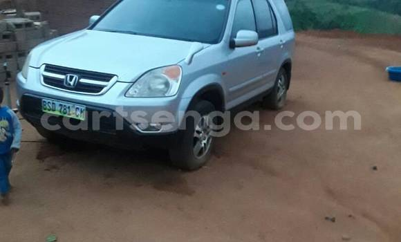 Buy Used Honda CR-V Silver Car in Manzini in Swaziland