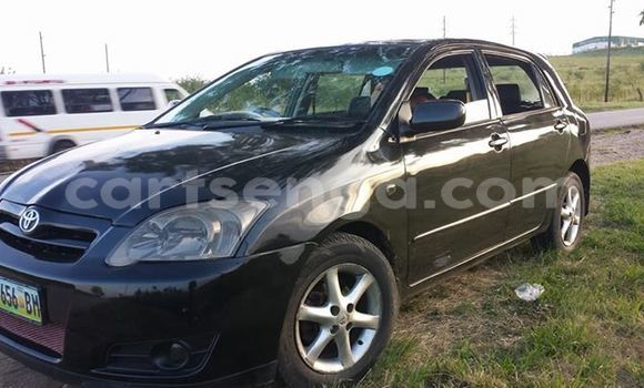 Buy Used Toyota Runx Black Car in Mbabane in Swaziland