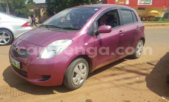 Buy New Toyota Vitz Other Car in Manzini in Swaziland