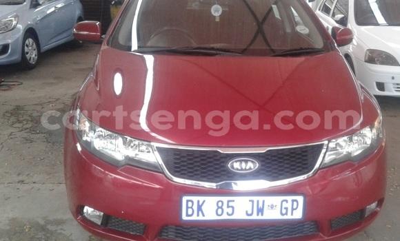 Buy Used Kia Cerato Koup Red Car in Manzini in Swaziland