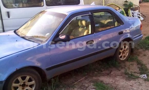 Buy Used Toyota Corolla Other Car in Nhlangano in Swaziland