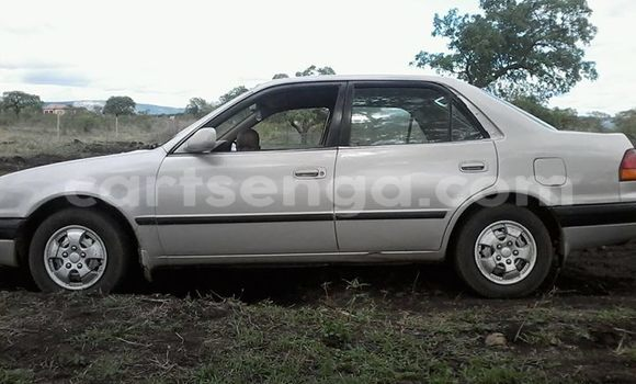 Buy Used Toyota Corolla Silver Car in Siteki in Swaziland