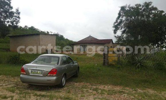 Buy Nissan 350Z Silver Car in Manzini in Swaziland