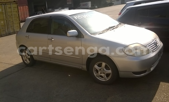 Buy Used Toyota Allex Silver Car in Siteki in Swaziland
